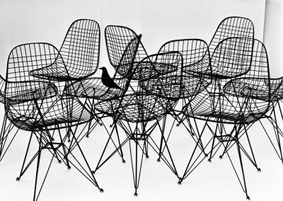16.-The-World-of-Charles-and-Ray-Eames.-Wire-Chairs-with-bird,-1953.-Photo-Charles-Eames.-©-Eames-Office-LLC