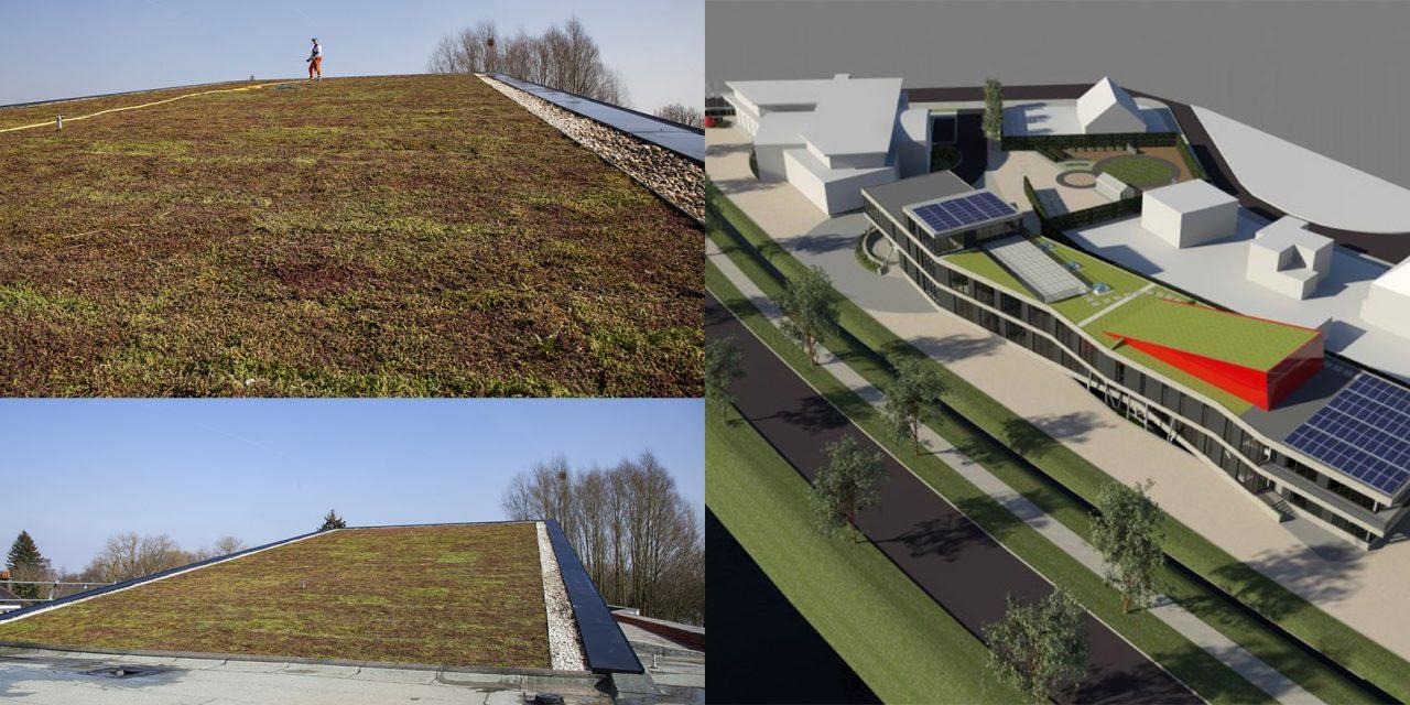 Une solution polyvalente pour toitures végétales