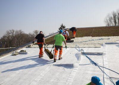 Urbanscape, une solution polyvalente pour toitures végétales